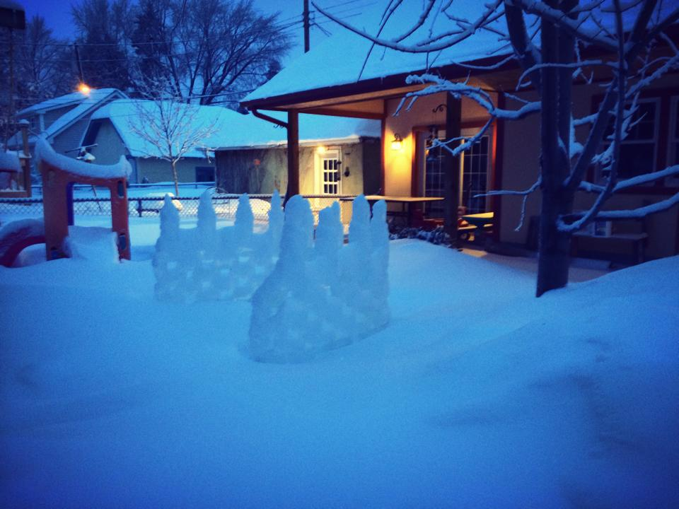 The back yard from our stoop, including the ice fort.